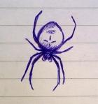 spiderdoodle
